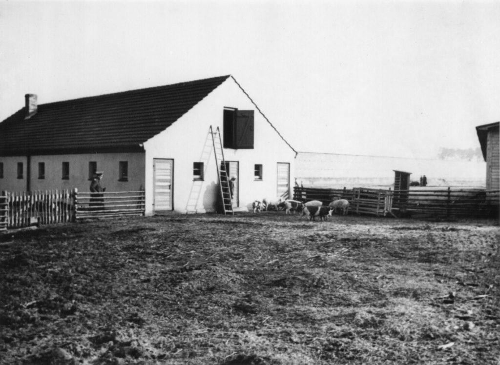Der Schweinestall vor Anbau des Pferdestalls, ca. 1940/41. Fotograf/in unbekannt (MGR/SBG, Foto-Nr. 1646)