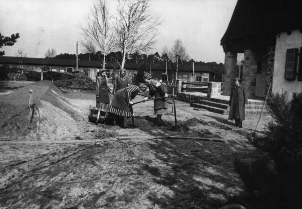Weibliche Häftlinge des KZ Ravensbrück bei Erdarbeiten vor einem SS-Unterführerhaus, ca. 1940/41. Fotograf/in unbekannt (MGR/SBG, Foto-Nr. 1705)