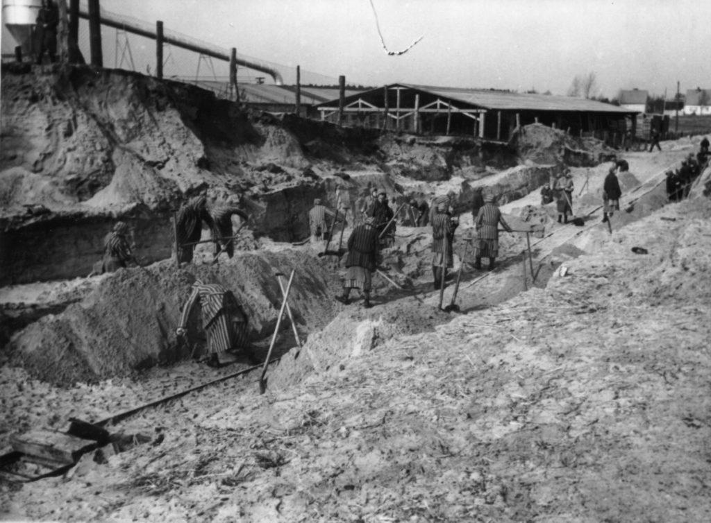 Weibliche Häftlinge des KZ Ravensbrück bei Erdarbeiten, im Hintergrund der Holzlagerungsschuppen der späteren DAW-Tischlerei, ca. 1940/41. Fotograf/in unbekannt (MGR/SBG, Foto-Nr. 1680)